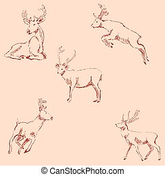 Deer sketch. Pencil drawing by hand. Vintage colors. Vector