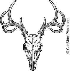 Deer Skull Vector - editable vector illustration of deer...