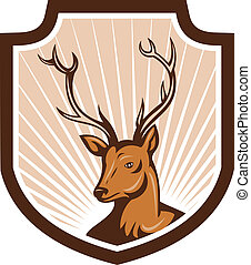 Deer Stag Buck Antler Head Shield - Illustration of a stag...