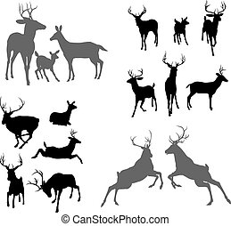 Deer stag fawn and doe silhouettes - A set of deer...