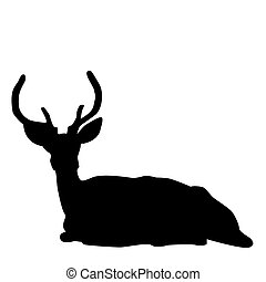 Deer stag silhouette - Silhouette of a sitting deer stag...