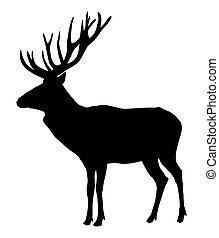Deer - Vector illustration of deer silhouette