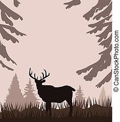 Deer - Vector deer in the woods