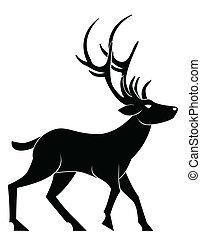 deer walk