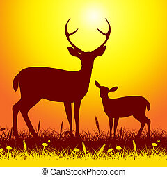 Deer Wildlife Shows Nature Reserve And Animal - Deer ...