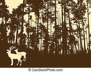 deers, épais, bois, silhouette
