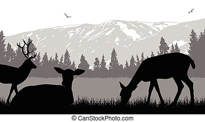 Deers on wild nature landscape