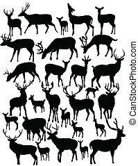 deers silhouette collection