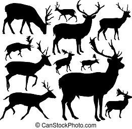 deers., silhuetas