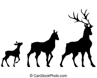 The shapes of three deers