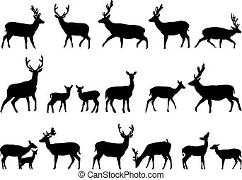 Deers - Collection of silhouettes of wild animals - the deer...