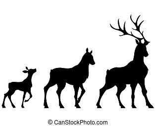 Deers - The shapes of three deers