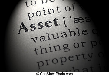 definition of asset - Fake Dictionary, Dictionary definition...
