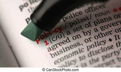 Definition of policy highlighted in the dictionary
