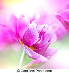 Defocus beautiful purple flowers. Image with bright summer...