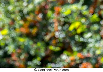 Defocused abstract background