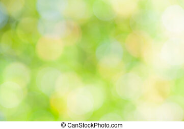 defocused abstract green natural background
