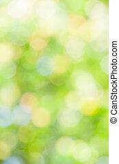 defocused, abstrakt, grøn baggrund