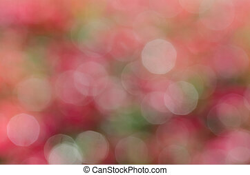 defocused, bokeh, lyse