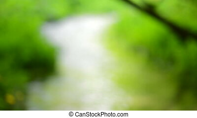 Defocused nature background. Green blurred lights.