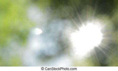 Defocused nature background. Sunny blurred lights.