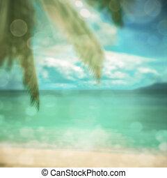defocused, tropical, playa., perfecto, vacaciones, fondo.