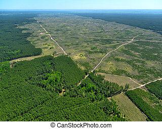 deforestation., (aerial, view).