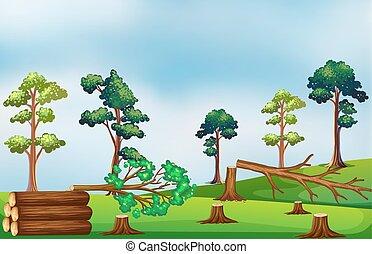 Deforestation scene on the field
