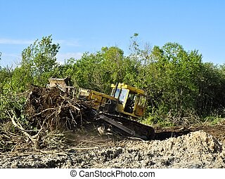 deforestation - The bulldozer destroys trees turning out...