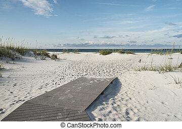 dejar, comenzar, vacaciones de playa