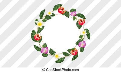dekoracyjny, kwiaty, różowy, przestrzeń, biały czerwony,...