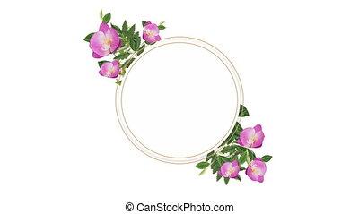 dekoracyjny, kwiaty, różowy, przestrzeń, kopia, zdejmować...