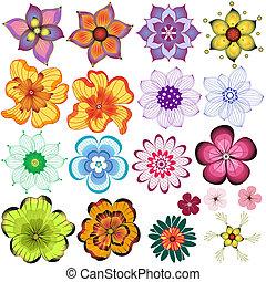 dekoracyjny, kwiaty, zbiór