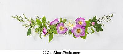 dekoracyjny, róża, kwiaty, dziki, skład