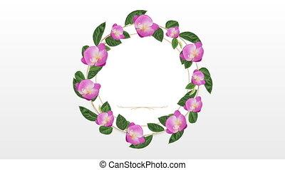 dekoracyjny, różowy kwiat, przestrzeń, kopia, zdejmować...