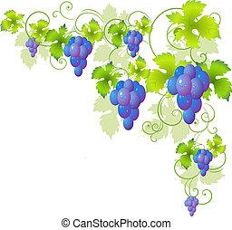 dekoracyjny, róg, od, przedimek określony przed rzeczownikami, winorośl