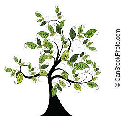 dekoracyjny, zielone drzewo