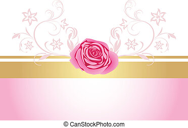dekoratív, rózsaszínű, határ, rózsa