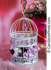 dekoratív, rózsaszínű, tele, bár, cukorka, roses., fehér, kalitka madár
