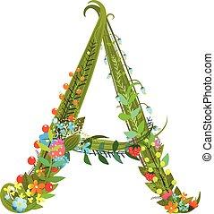 dekoratív, virág, kivirul, abc, finom, levél, botanikai