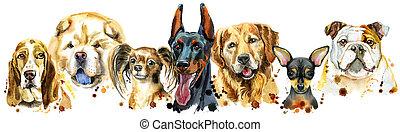 dekoration, aquarell, umrandungen, hunden, porträts