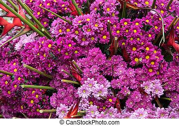 dekoration, gerbera, rosa blüten, floristic, schoenheit