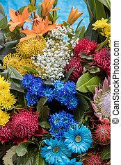 dekoration, schoenheit, bunte, tropische , floristic, blumen