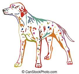 dekorativ, stehende , bunte, hund, abbildung, vektor, porträt, dalmatiner