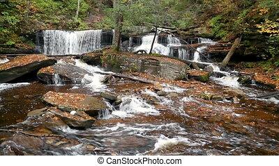 Delaware Falls Loop ? Ricketts Glen Pennsylvania - Seamless...