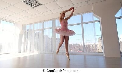 Delectable female ballet dancer in pink tutu practicing and...