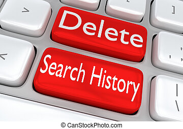 Delete Search History concept