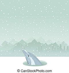 delfín, en, un, ice-hole