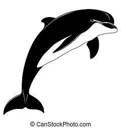 delfin, capstrzyk