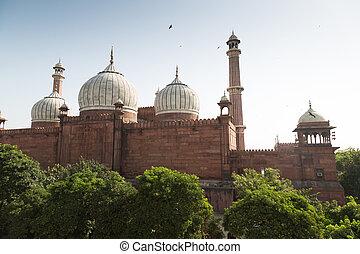 delhi, vieux, india., masjid, jama, mosquée